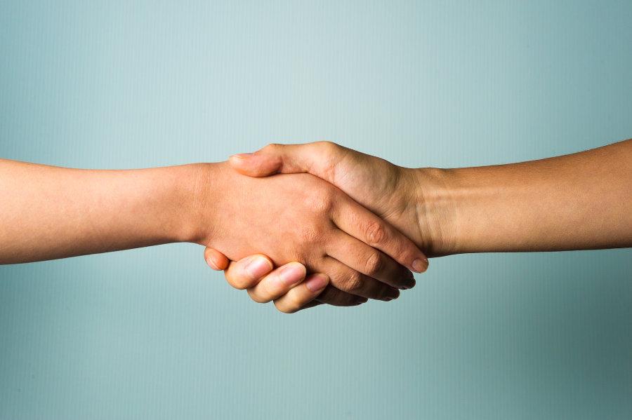 Price Promise Handshake